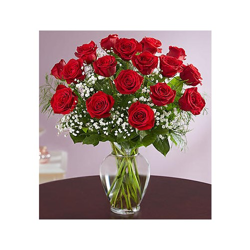 18-red-roses-in-a-vase-by-flowerama