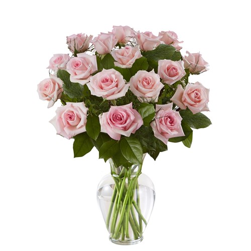 12-pink-roses-in-a-clear-vase-flowerama