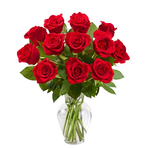 12_rose_red_only_greens
