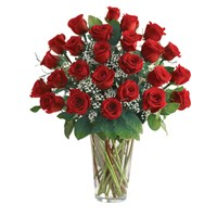 Classic-Two-Dozen-Roses-in-a-vase